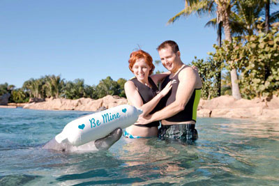 Things to Do on your Orlando Honeymoon