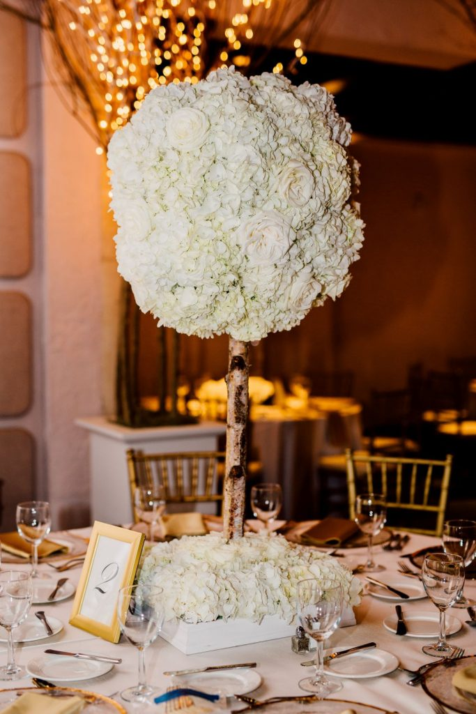 Black Tie Wedding - Just Marry Weddings - Isleworth Country Club - Madison Hope Photography