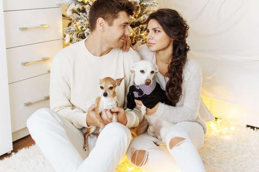 Fun Engagement Announcement Ideas - Pets - Just Marry Weddings