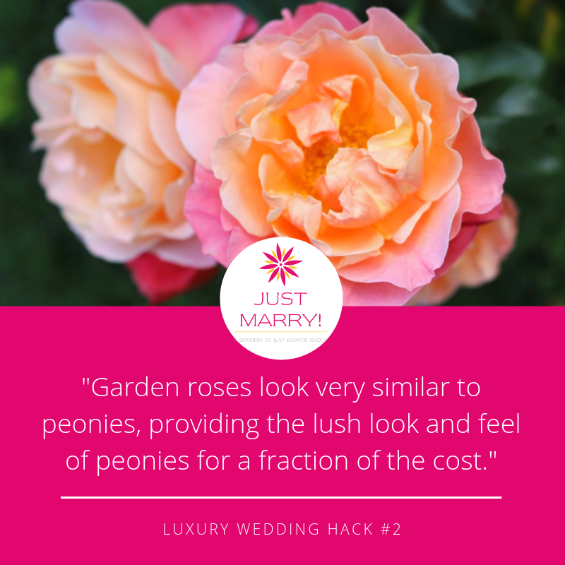 Luxury Wedding Garden Roses - Just Marry Weddings